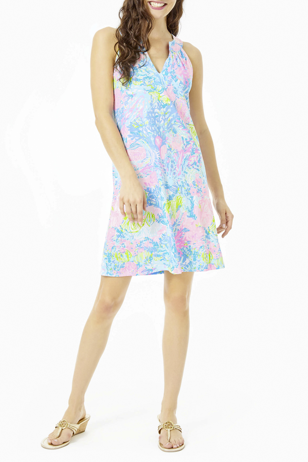 Lilly Pulitzer  Ross Shift Dress - Back Cropped Image