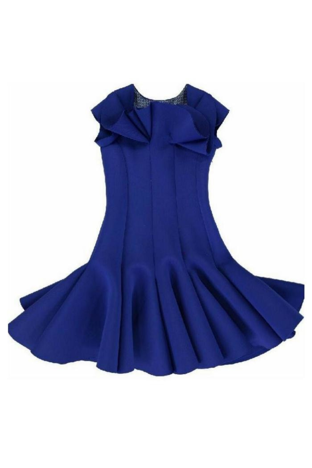 Nikolia Royal Lily Dress - Front Cropped Image
