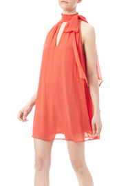 Rubber Ducky Peek A Boo Dress - Front cropped
