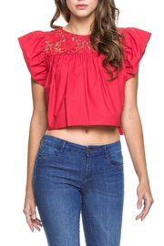 Endless Rose Ruby-Red Crop Top - Front cropped