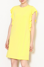 Dex Ruffle Dress - Product Mini Image