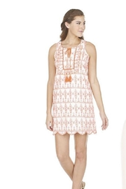 Joy Joy Ruffle Embroidered Dress - Product Mini Image