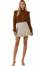 Endless Rose Ruffle Leather Skirt - Back cropped