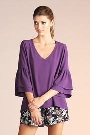Tyche Ruffle Sleeve Blouse - Product Mini Image