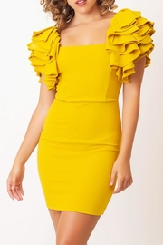Symphony Ruffle Sleeve Dress - Product Mini Image