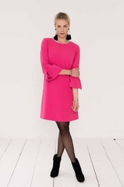 EsQualo Ruffle Sleeve Dress - Product Mini Image