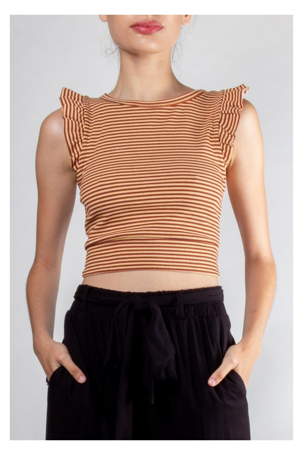 storia Ruffle Striped Crop-Top - Front Cropped Image