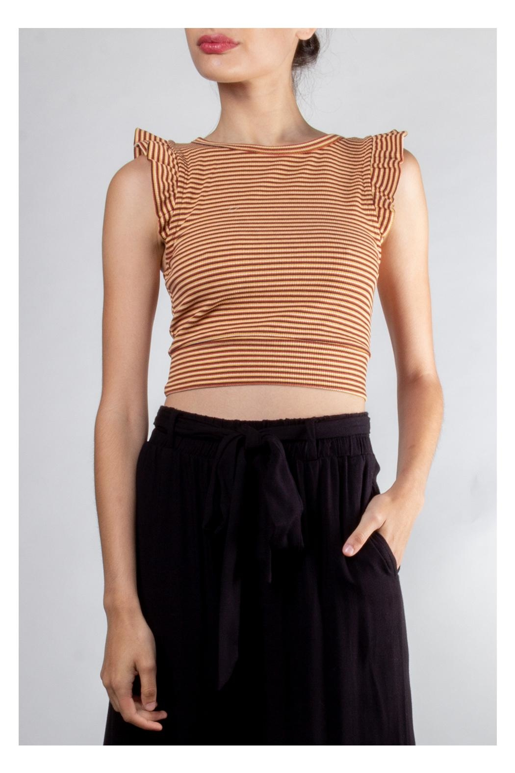 storia Ruffle Striped Crop-Top - Front Full Image