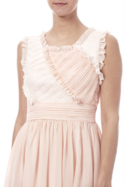 Minuet Ruffled Dress - Other