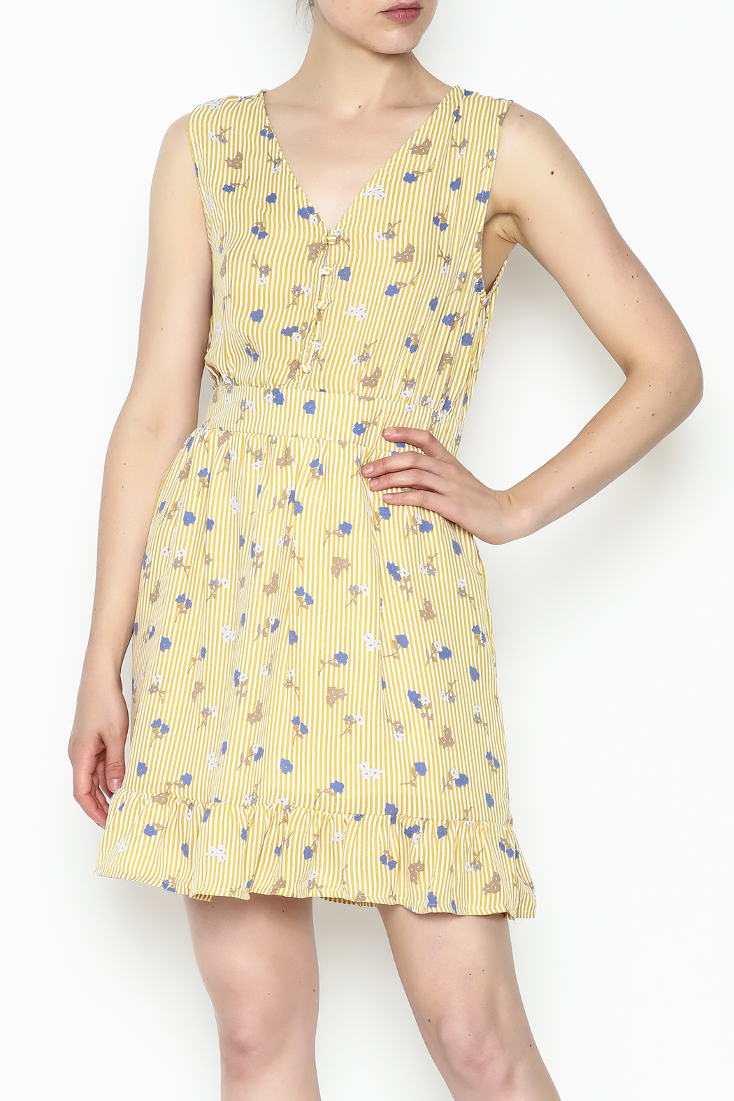 Runway Paris Striped Floral Dress - Front Cropped Image