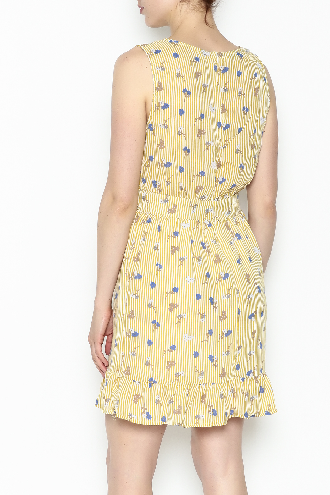 Runway Paris Striped Floral Dress - Back Cropped Image
