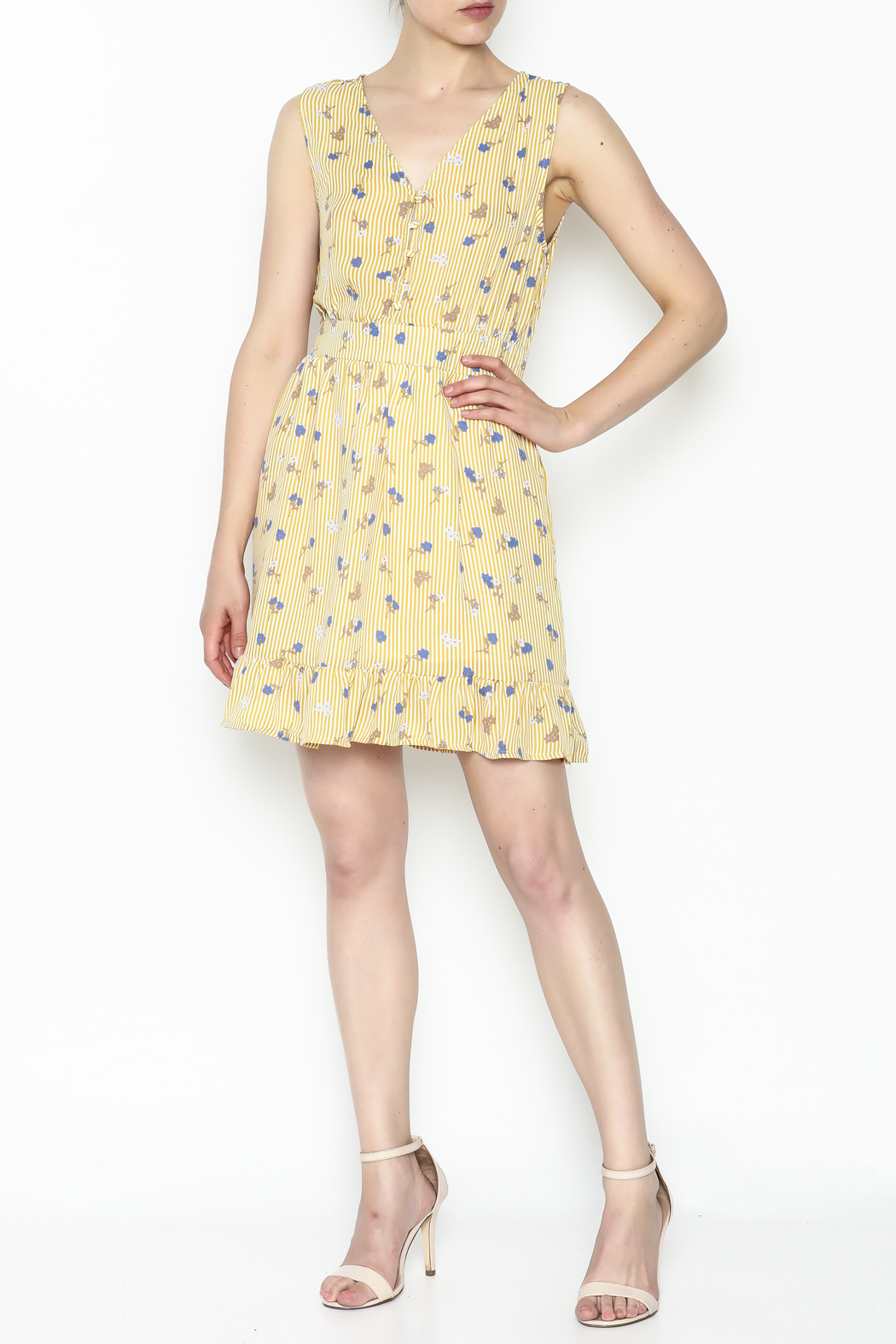 Runway Paris Striped Floral Dress - Side Cropped Image