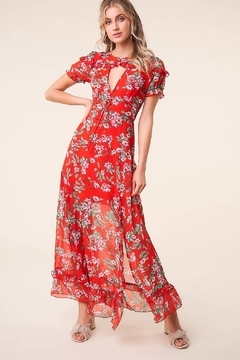 Sugarlips Rustic Rose Floral Maxi Dress - Product List Image