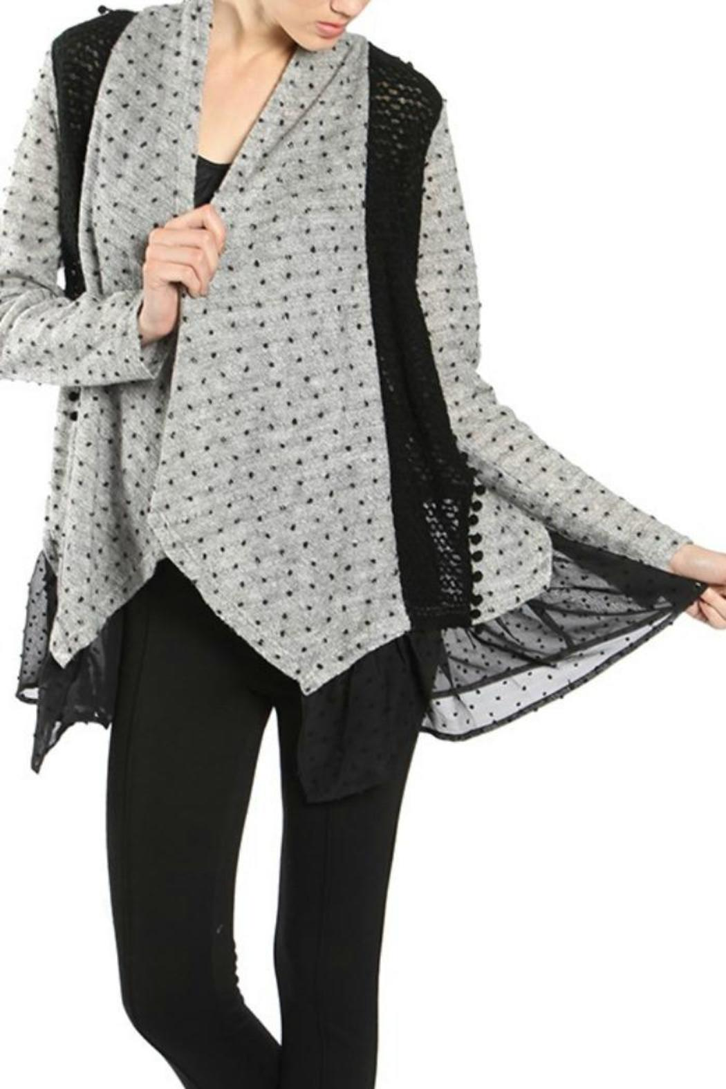 Ryu Dotted Lace Cardigan - Front Cropped Image