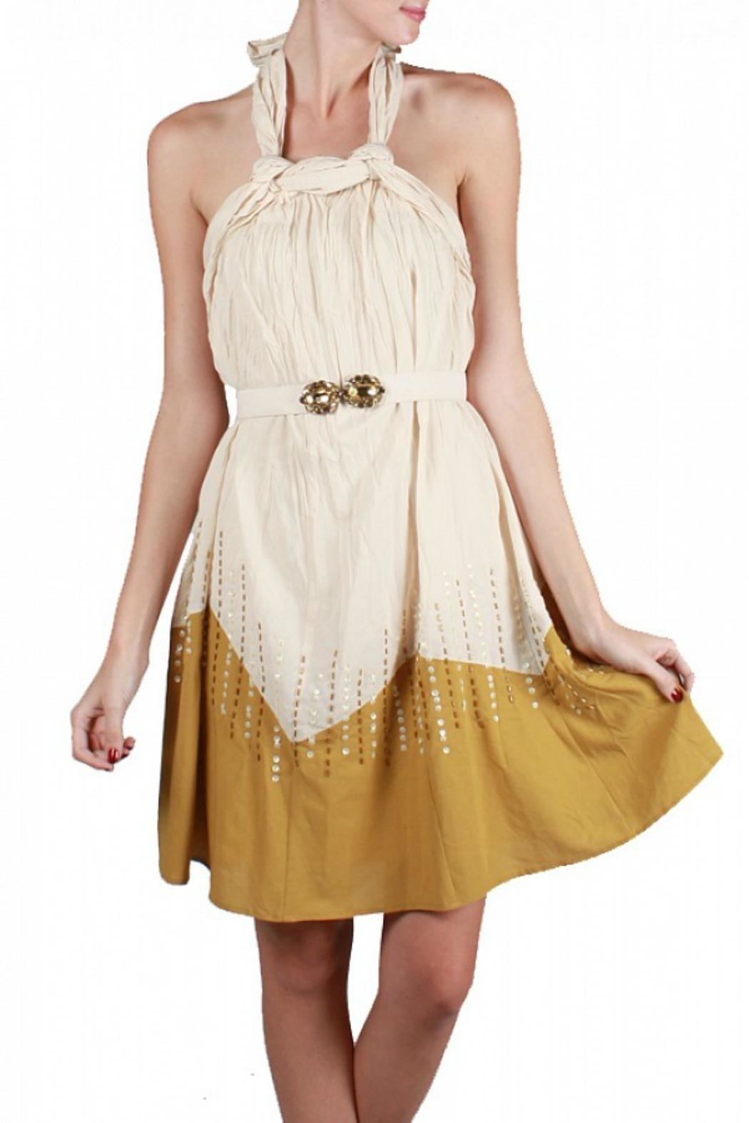 Ryu Halter Cocktail Dress - Front Cropped Image