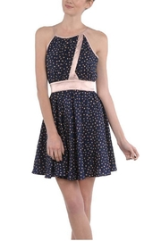 Ryu Navy Rose Dress - Front cropped