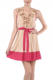 Ryu Parchment And Cerise Dress - Product Mini Image