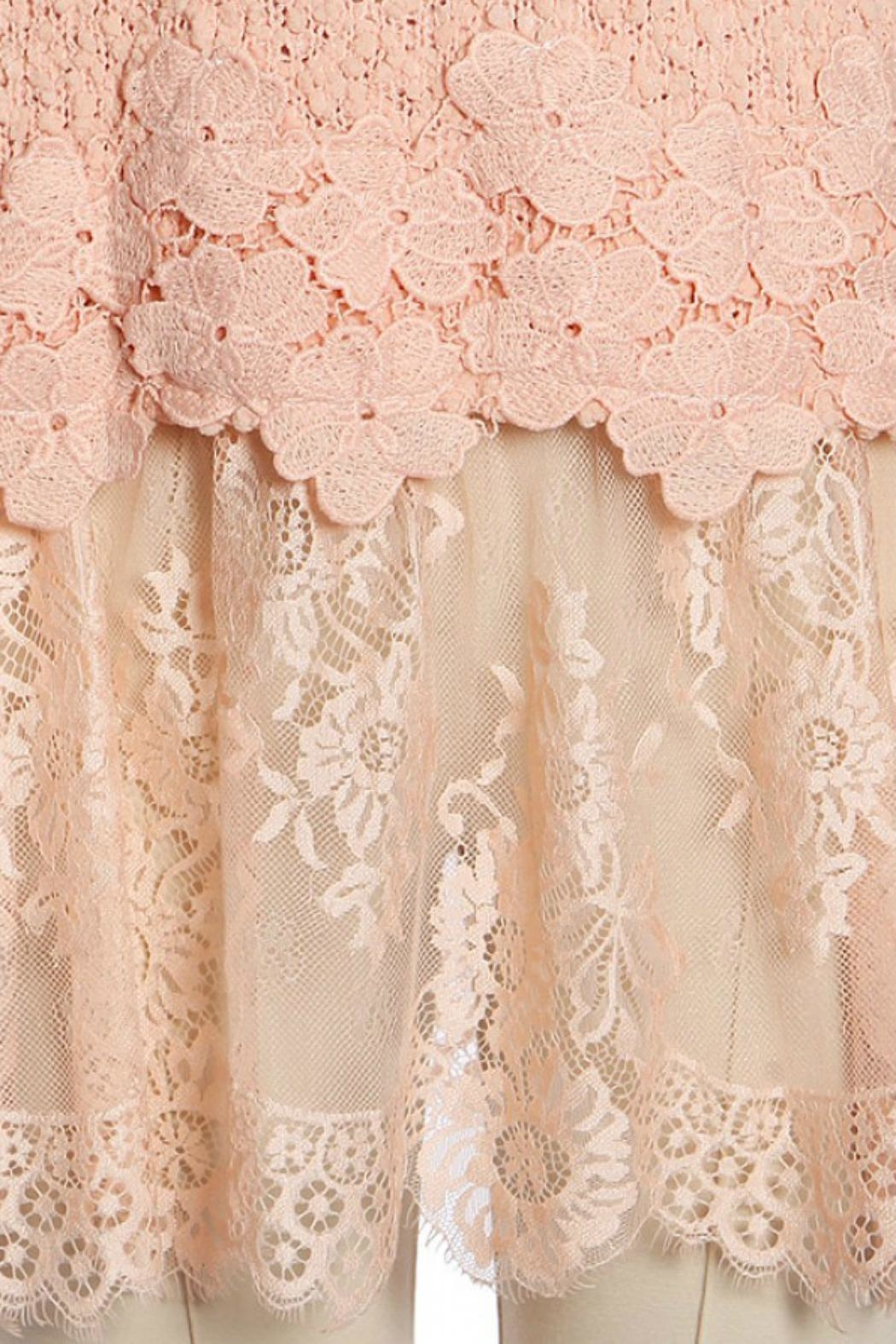 Ryu Peach Lace Sweater - Side Cropped Image