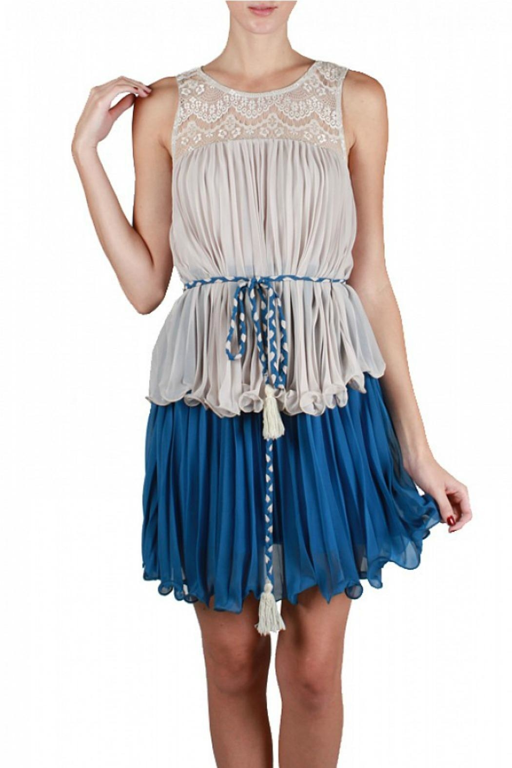 Ryu Pleated Dress - Front Cropped Image
