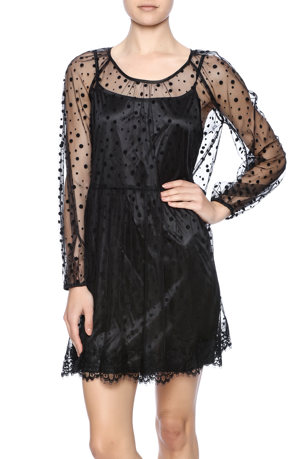 Ryu Sheer Dot Overlay Dress - Front Cropped Image