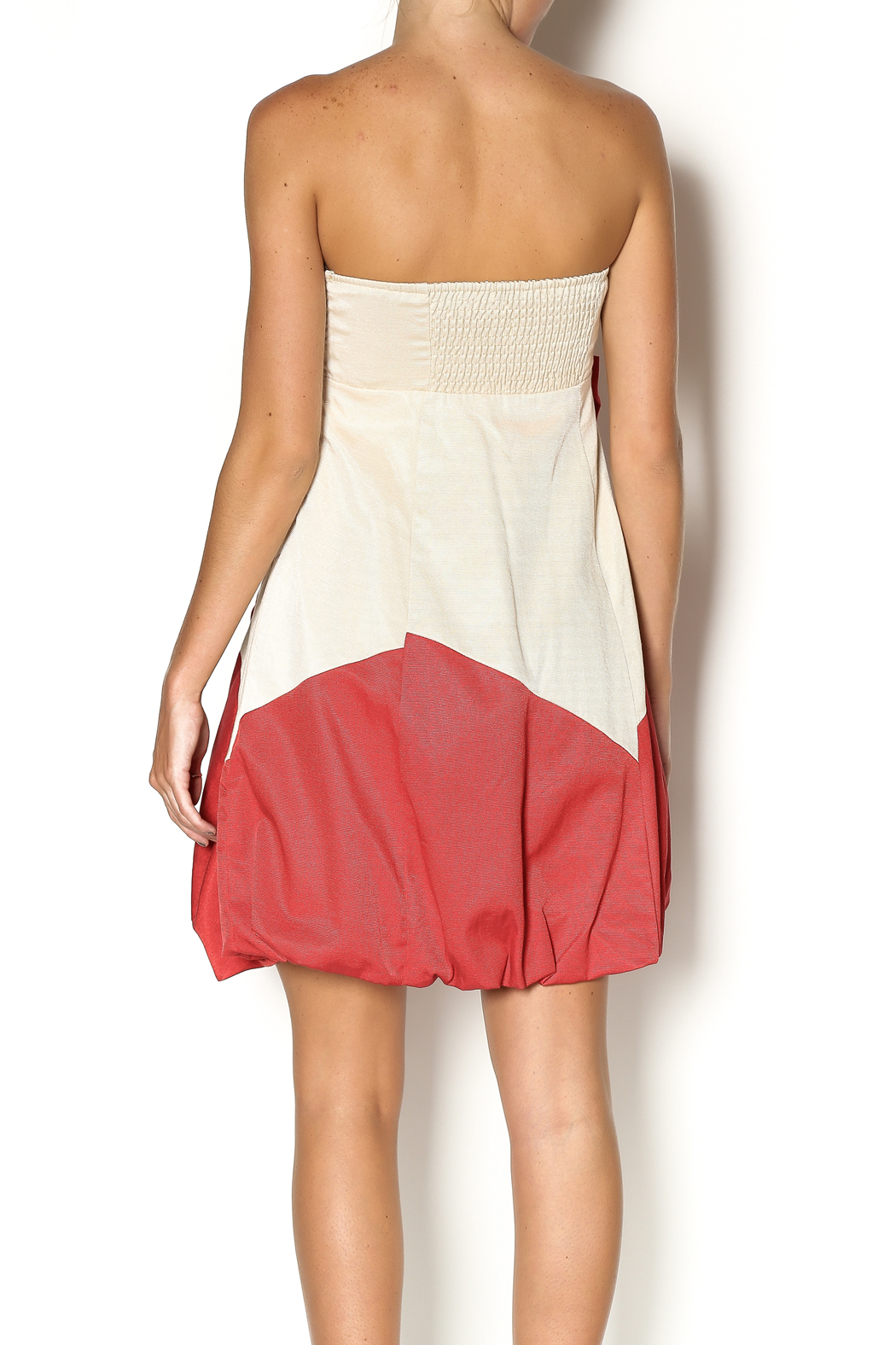 Ryu Strapless Dress - Back Cropped Image