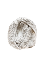Sable + Company Beige Infinity Scarf - Back cropped