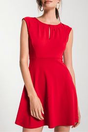 Black Swan Sachi Fit & Flare Dress - Front cropped