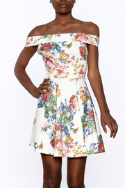 Sage Floral Mini Dress - Product Mini Image