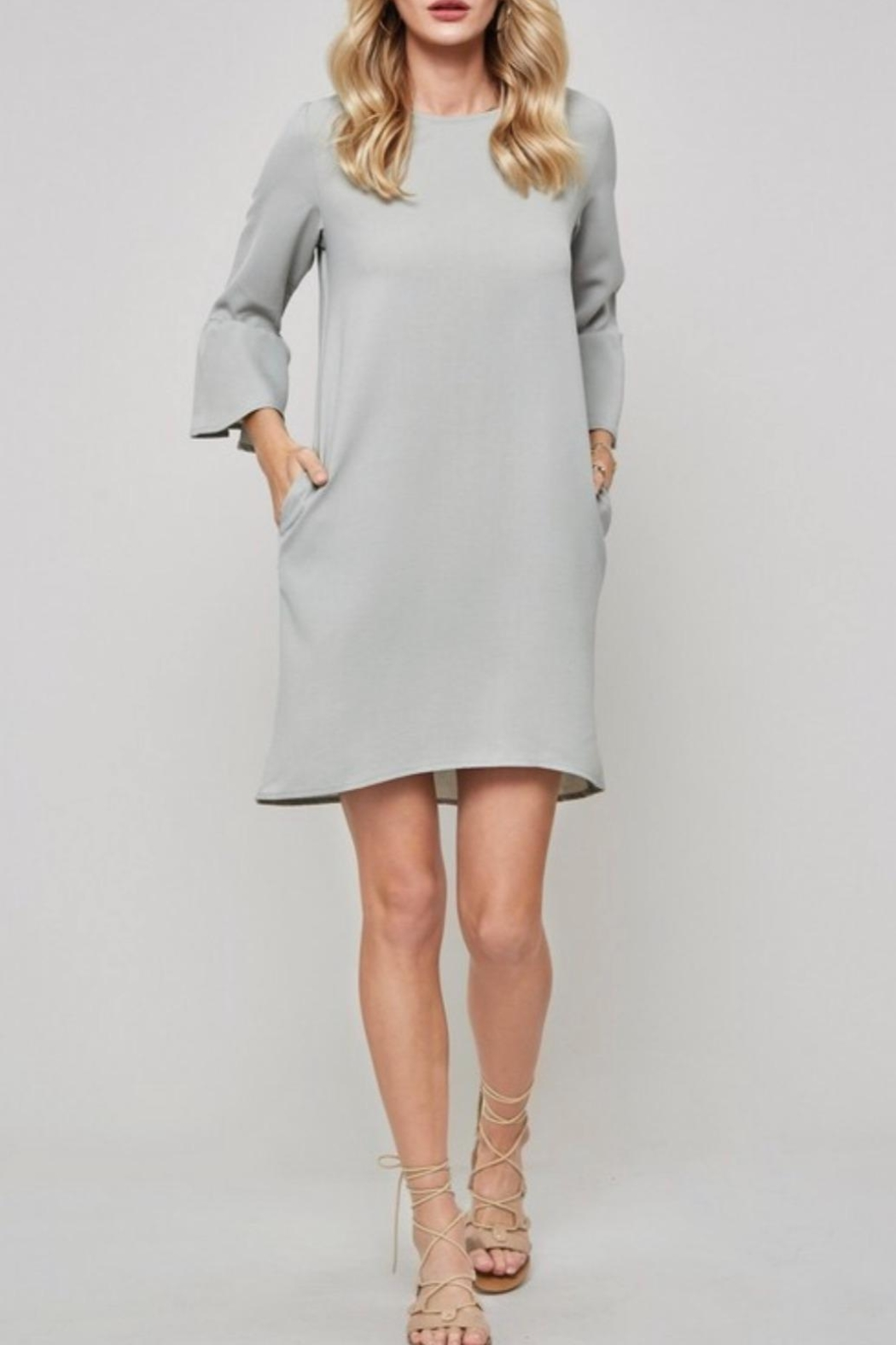 Promesa USA Sage Shift Dress - Front Cropped Image