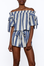 Sage Blue Stripe Print Top - Front cropped