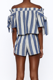 Sage Blue Stripe Print Top - Back cropped