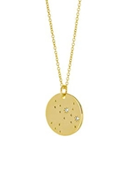 Wild Lilies Jewelry  Sagittarius Constellation Necklace - Front full body