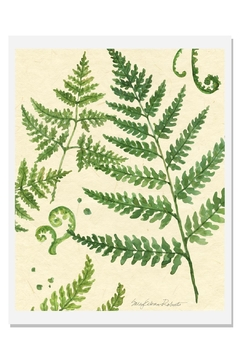 Shoptiques Product: Ferns Art Print B-Natural