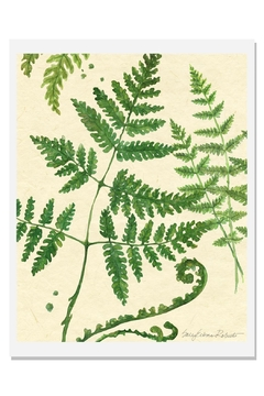 Shoptiques Product: Ferns Art Print A-Natural