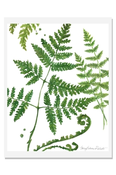 Shoptiques Product: Ferns Art Print A-White