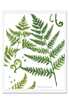Shoptiques Product: Ferns Art Print B-White