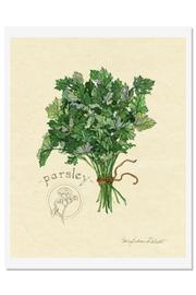 Sally Eckman Roberts Herbs Print-Parsley - Front cropped