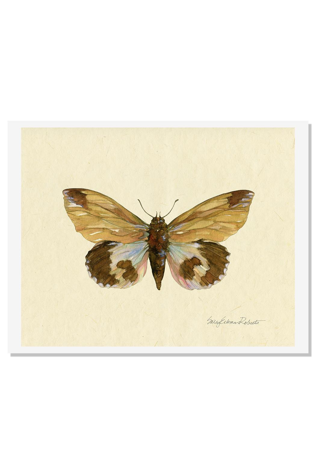 Sally Eckman Roberts Moth 2 Print - Front Full Image