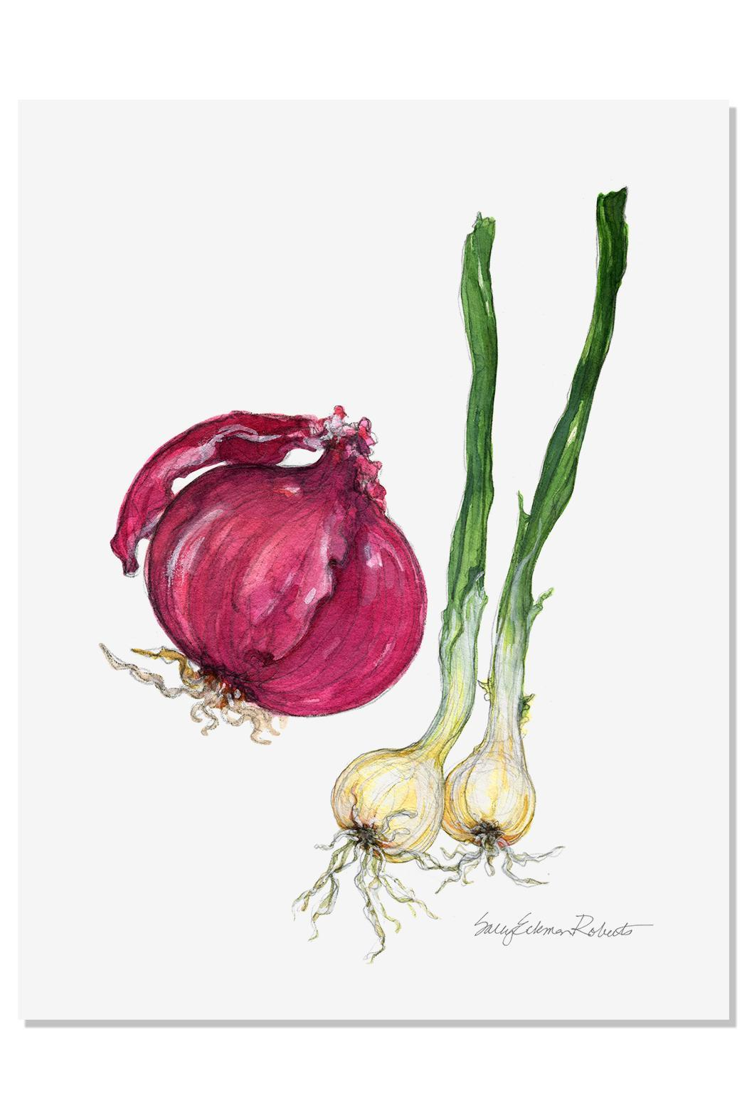 Sally Eckman Roberts Onion Print - Front Cropped Image