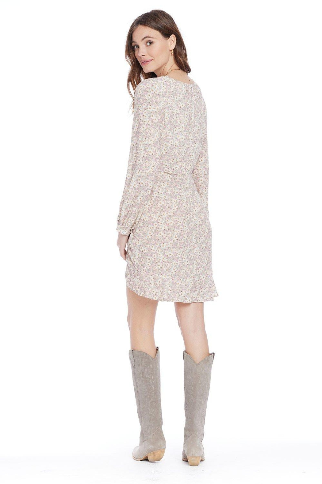 Saltwater Luxe Brantley Mini Dress - Side Cropped Image