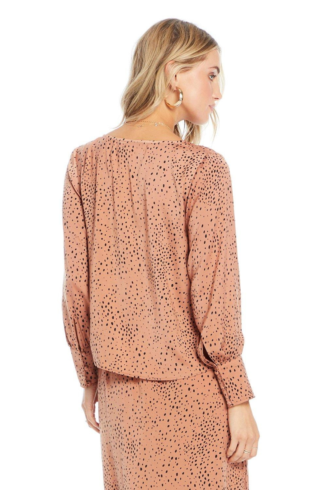 Saltwater Luxe Mercy Blouse - Side Cropped Image