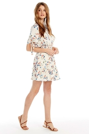 Saltwater Luxe Newport Mini Dress - Front cropped