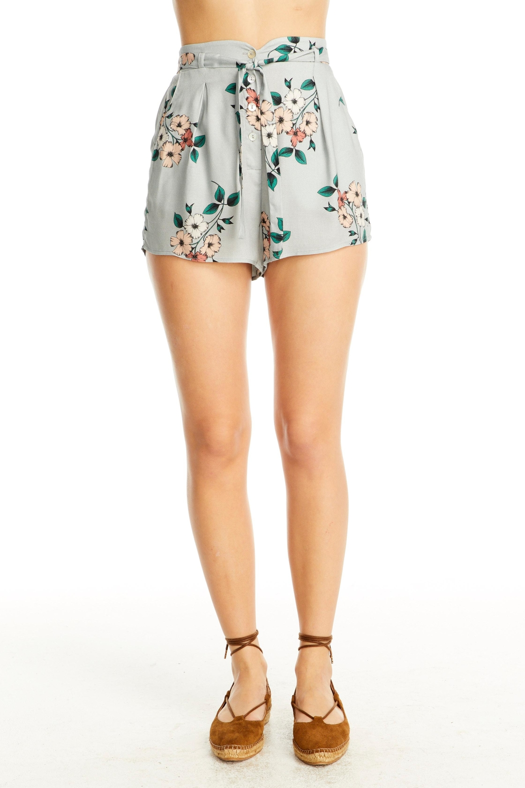 Saltwater Luxe Quinn Shorts - Main Image