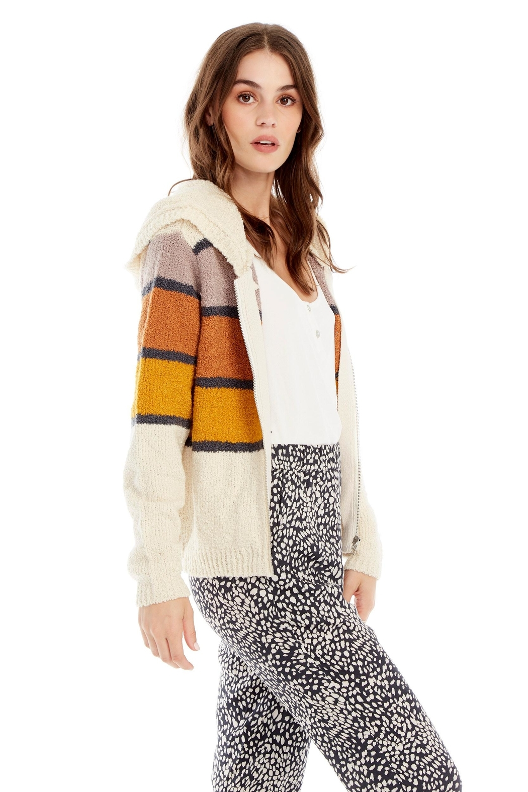 Saltwater Luxe Sweater Stripe Hoodie - Front Full Image