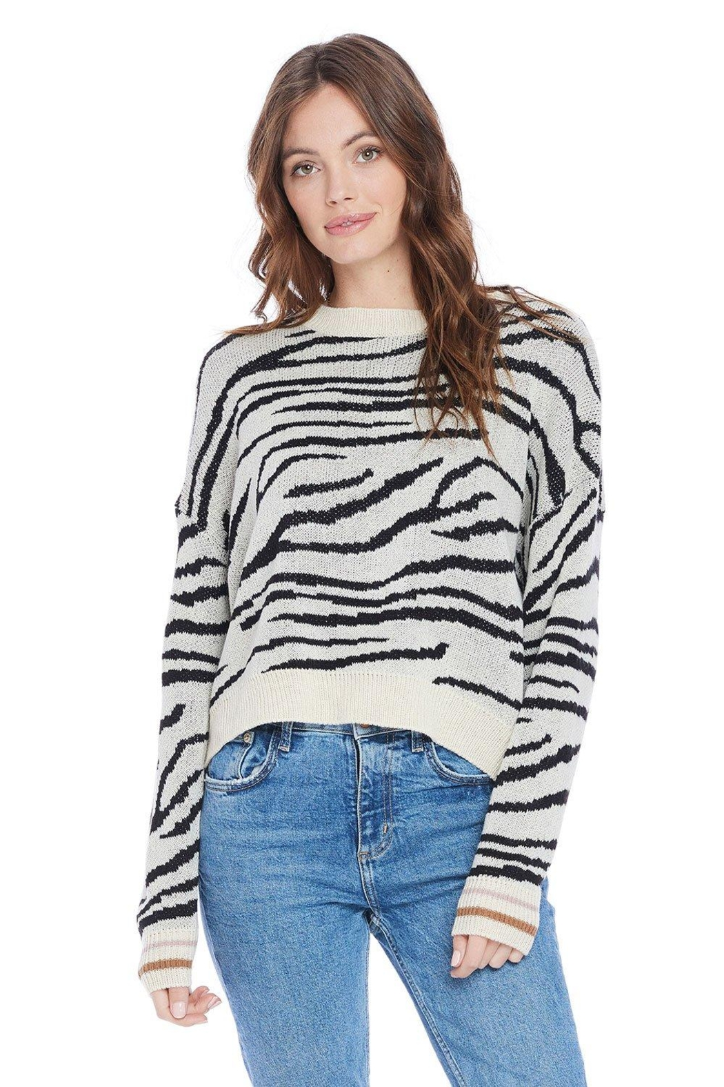 Saltwater Luxe Wendy Sweater - Main Image