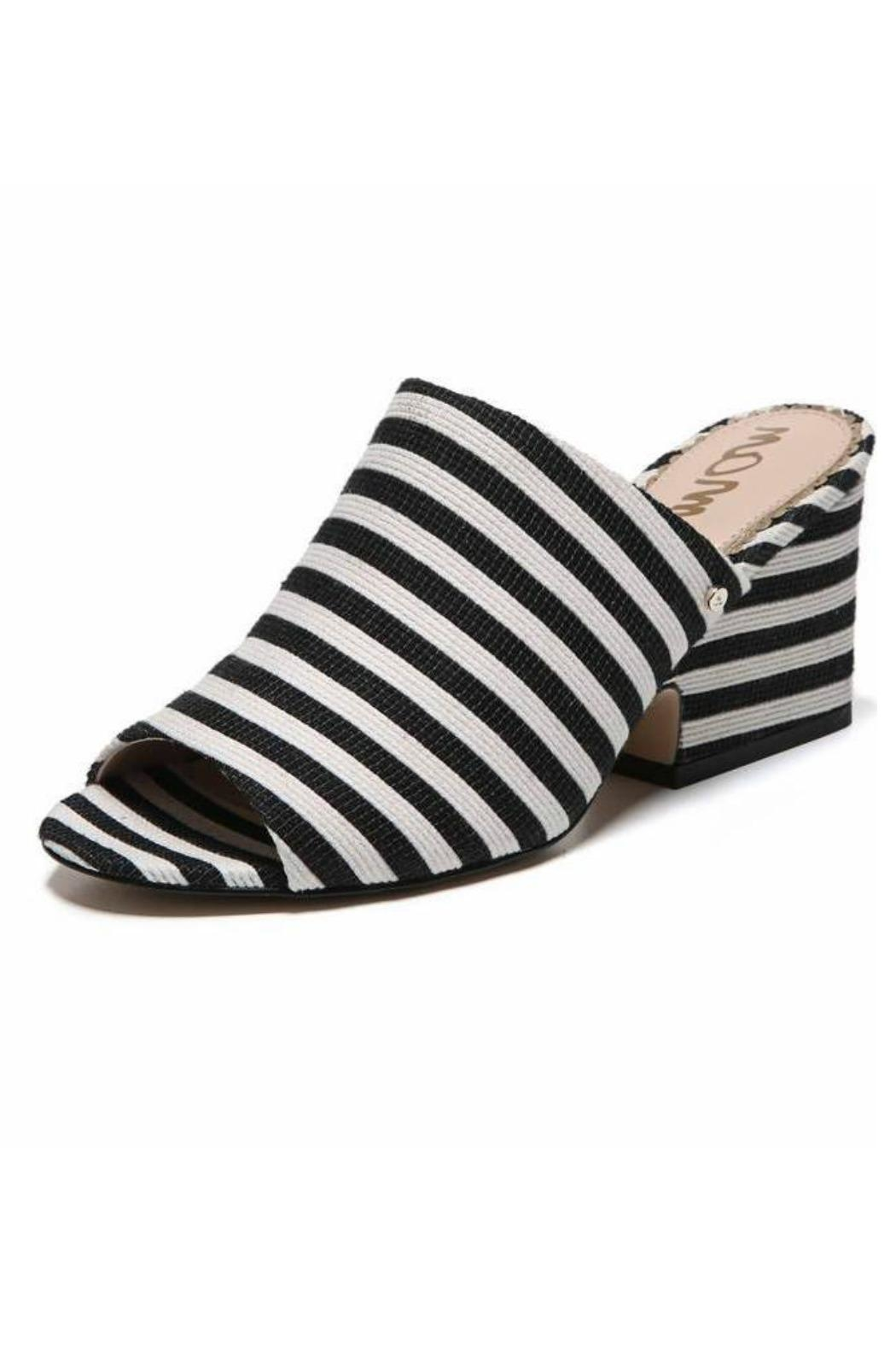 Sam Edelman Jill Striped Mule - Front Full Image