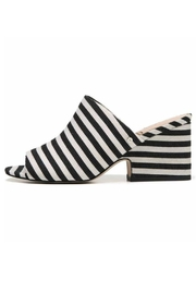 Sam Edelman Jill Striped Mule - Front cropped