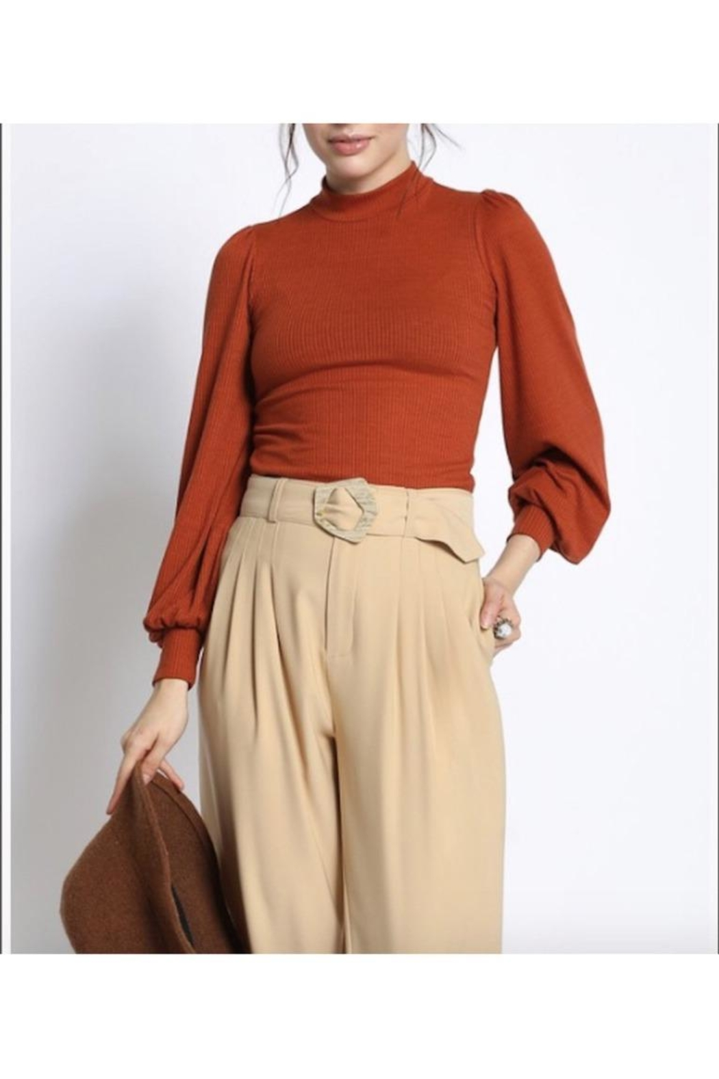 San Souci Balloon Sleeve Top - Front Cropped Image