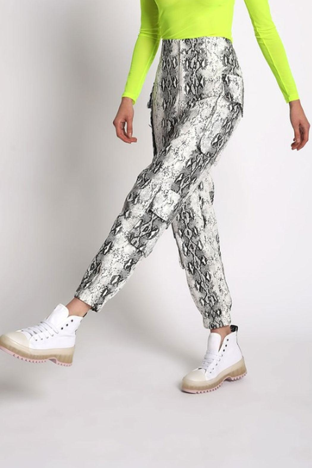 San Souci Snake Cargo Pants - Front Cropped Image