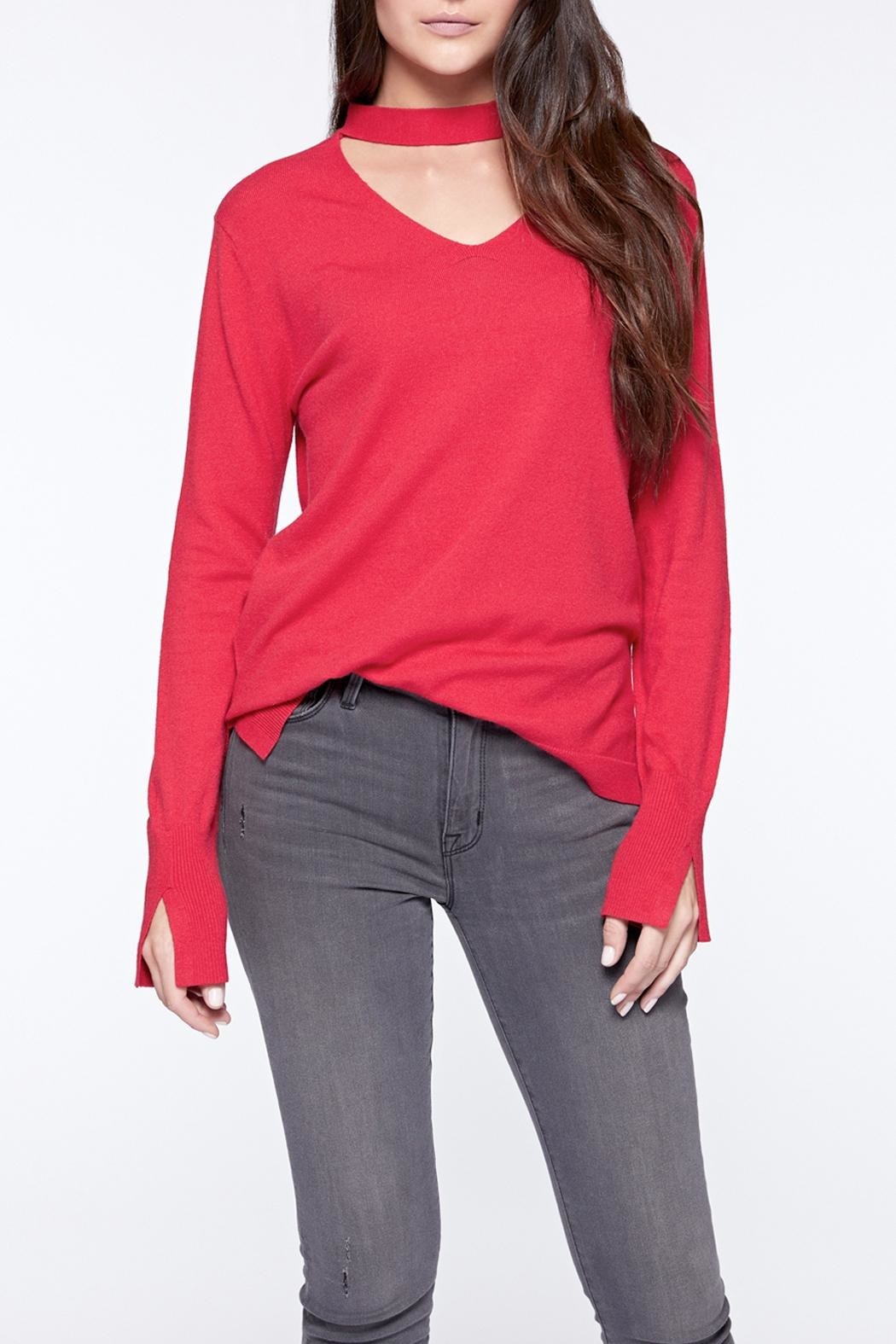 Sanctuary Choker Neck Sweater - Main Image